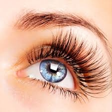 lash lifting images.jpg
